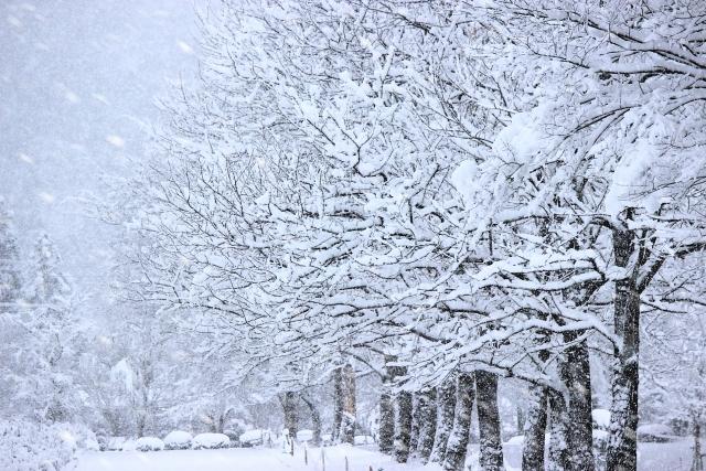 飛行機が雪で欠航に!雪で欠航になる条件や欠航時の対処法【まとめ】