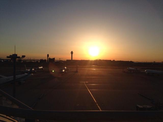 圧倒的な離着陸数を誇る!羽田空港の展望デッキの魅力とは?