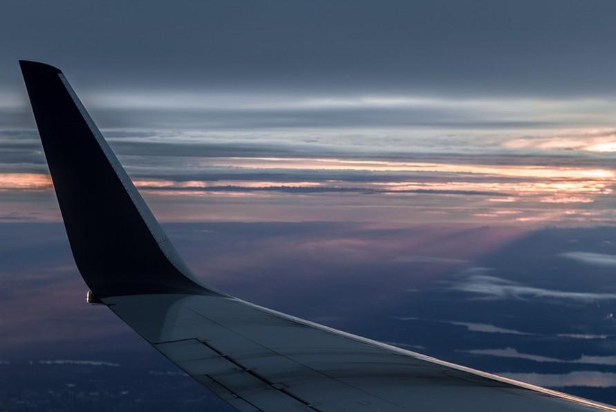 就航している航空会社と路線